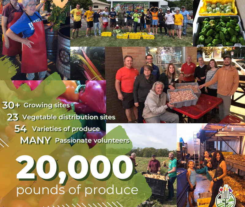 2019 Growing Season Wrap-Up: 20,000 pounds